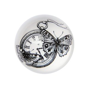 Time Flies - Paperweights